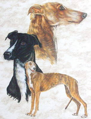 Drawing - Greyhound Triple by Barbara Keith