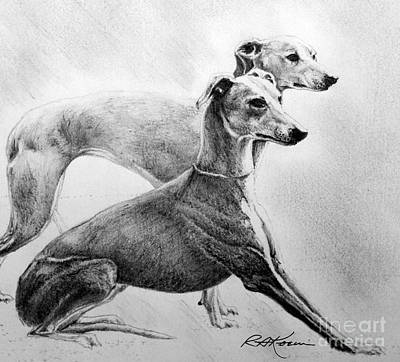 Rescued Greyhound Drawing - Greyhounds by Roy Anthony Kaelin