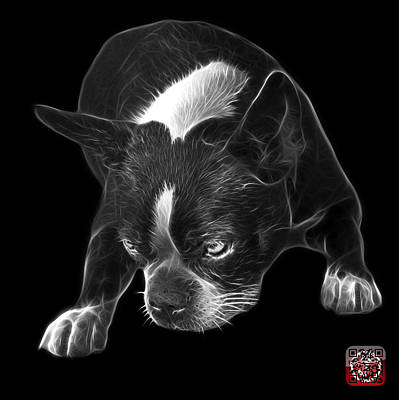 Mixed Media - Greyscale Boston Terrier Art - 8384 - Bb by James Ahn