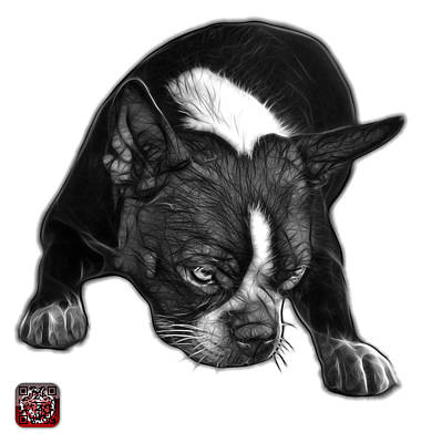 Mixed Media - Greyscale Boston Terrier Art - 8384 - Wb by James Ahn