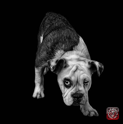 Painting - Greyscale English Bulldog Dog Art - 1368 - Bb by James Ahn