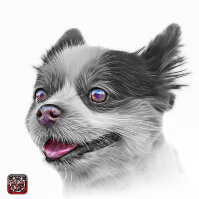 Painting - Greyscale Pomeranian Dog Art 4584 - Wb by James Ahn