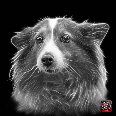 Mixed Media - Greyscale Shetland Sheepdog Dog Art 9973 - Bb by James Ahn