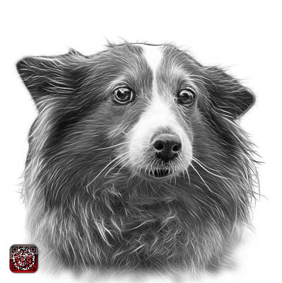 Mixed Media - Greyscale Shetland Sheepdog Dog Art 9973 - Wb by James Ahn