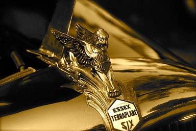 Photograph - Griffin Hood Ornament by Toni Berry
