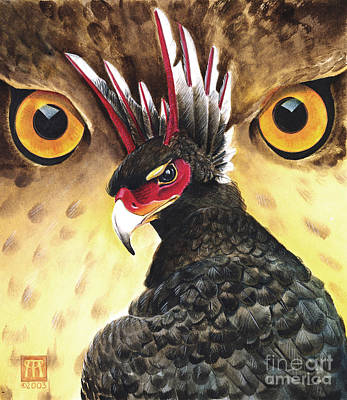 Griffin Sight Art Print by Melissa A Benson