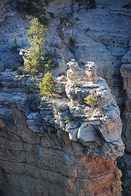 Photograph - Griffins In Grand Canyon by Michael Tieman