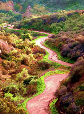 Griffith Park Trail Art Print by Timothy Bulone