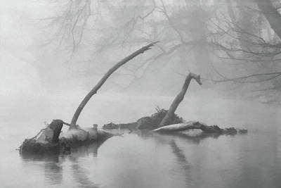 Photograph - Grings Mill Fog 022 by Scott McAllister