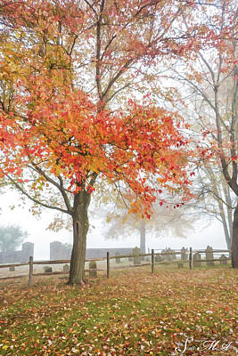 Photograph - Grings Mill Fog 15-022 by Scott McAllister