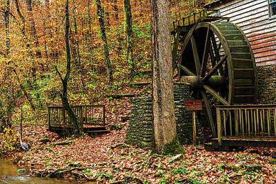 Photograph - Grist Mill Heron by Sharon Popek