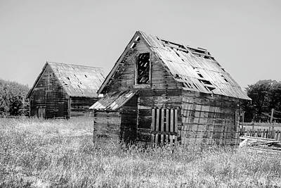 Photograph - Grizzled Acres In Black And White by Kandy Hurley