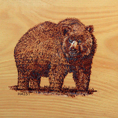 Pyrography - Grizzly 2 Pillow/bag by Ron Haist