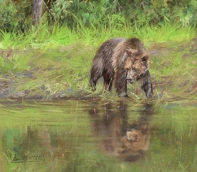 Brown Bear Painting - Grizzly Bear At Water's Edge by David Stribbling