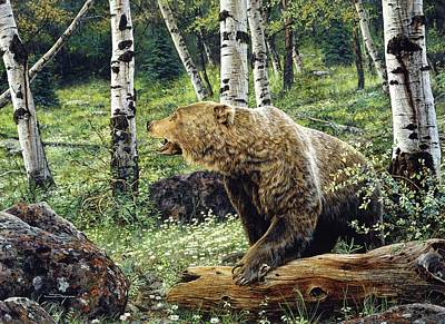 Painting - Grizzly Bear Forest by Brian Durfee