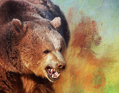 Photograph - Grizzly Bear by Gloria Anderson