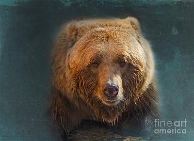 Grizzly Digital Art - Grizzly Bear Portrait by Betty LaRue
