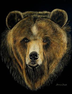 Brown Bear Drawing - Grizzly Bear by Sharyn Davis