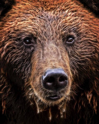 Montana Digital Art - Grizzly Close by Daniel Hagerman