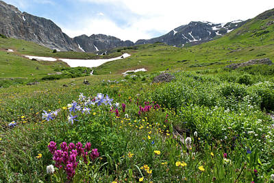 Photograph - Grizzly Gulch And Handie's Peak Summer Landscape by Cascade Colors