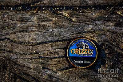Photograph - Grizzly by Michael Arend