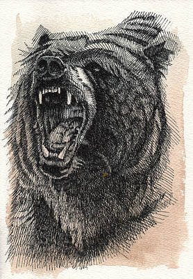 Pen And Ink Drawing Painting - Grizzly by Nathan Rhoads