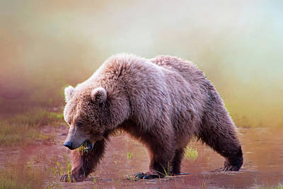 Grizzly On The Prowl Art Print