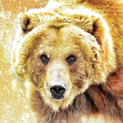 Photograph - Grizzly Paint by Steve McKinzie