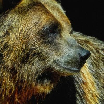 Digital Art - Grizzly Profile by Ernie Echols
