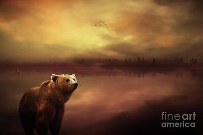 Grizzly Bear Mixed Media - Grizzly Sunset by KaFra Art