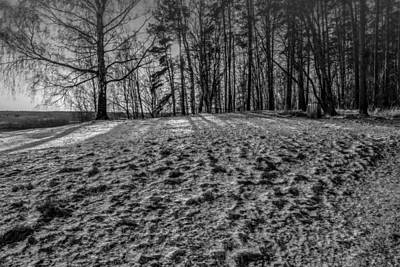 Photograph - Grongarn Monochrome by Leif Sohlman