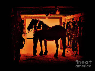 Beautiful Cowgirl Art Photograph - Grooming The Mighty Percheron by Al Bourassa