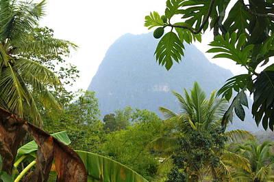 Photograph - Gros Piton St. Lucia by Daniel Jean-Baptiste