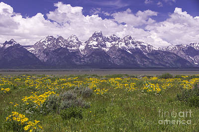 Photograph - Gros Ventre - Grand Tetons by Louise Magno