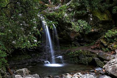 Grotto Falls And Rhododendrons Art Print