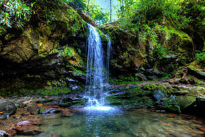 Photograph - Grotto Falls by Dale R Carlson