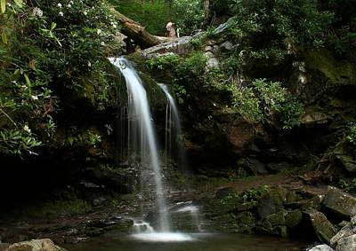 Photograph - Grotto Falls II by Frank G Montoya