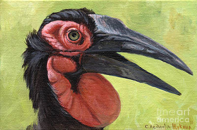 Hornbill Painting - Ground Hornbill by Svetlana Ledneva-Schukina