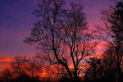 Photograph - Groundhog Day Sunrise by Kathryn Meyer