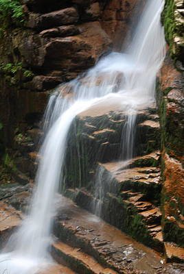 Photograph - Grounding Waterfall by Suzanne McDonald
