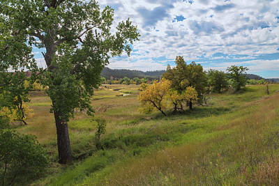Photograph - Grounds Of The Devils Tower by John M Bailey