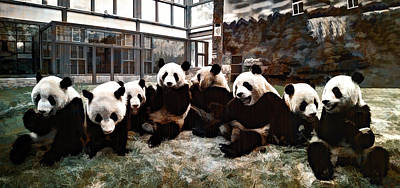 Photograph - Group Of Pandas by Maria Coulson
