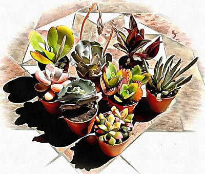 Photograph - Group Of Succulents by Dorothy Berry-Lound