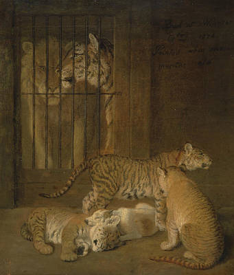 Painting - Group Of Whelps Bred Between A Lion And A Tigress by Jacques-Laurent Agasse