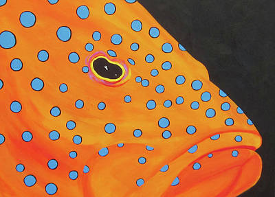 Grouper Head Art Print