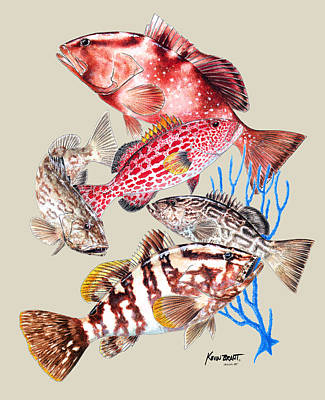 Painting - Grouper Montage by Kevin Brant