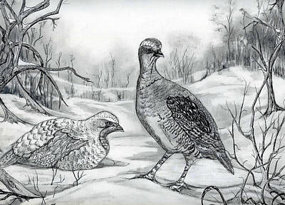 Upland Game Birds Painting - Grouse In Winter by Roseanne Marie Peters