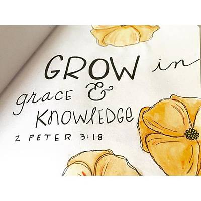 Sketch Photograph - Grow In Grace And Knowledge by Nancy Ingersoll
