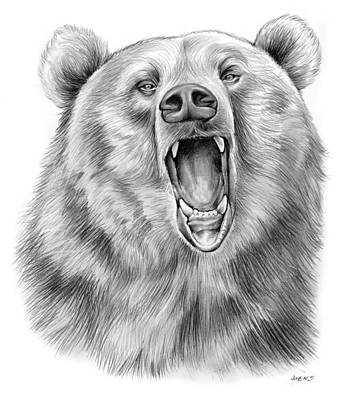 Animals Drawings - Growling Bear by Greg Joens