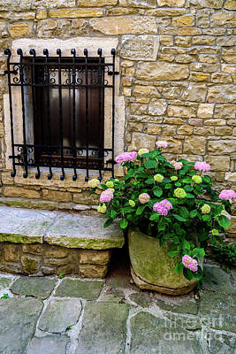 Photograph - Groznjan Istrian Hill Town Stonework And Flowerpot - Istria, Croatia by Global Light Photography - Nicole Leffer